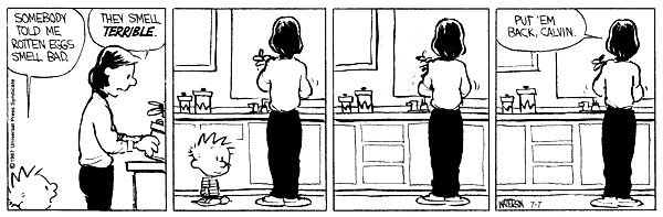 Calvin and Hobbs. Calvin knows something about bad smells
