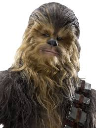 Are wookies real? In Vegas they are